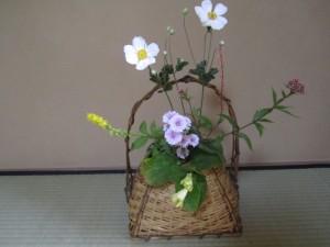 10月お花